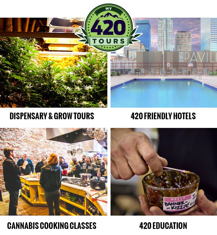My420Tours 420BuyersGuide Cannabis Prohibition Is Wasting Lives And Eating Your Tax Dollars
