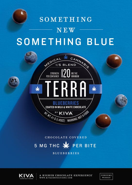 Terra Tin Blue press3 How do you explain your brain on drugs to someone whos never tried them? Visually of course.