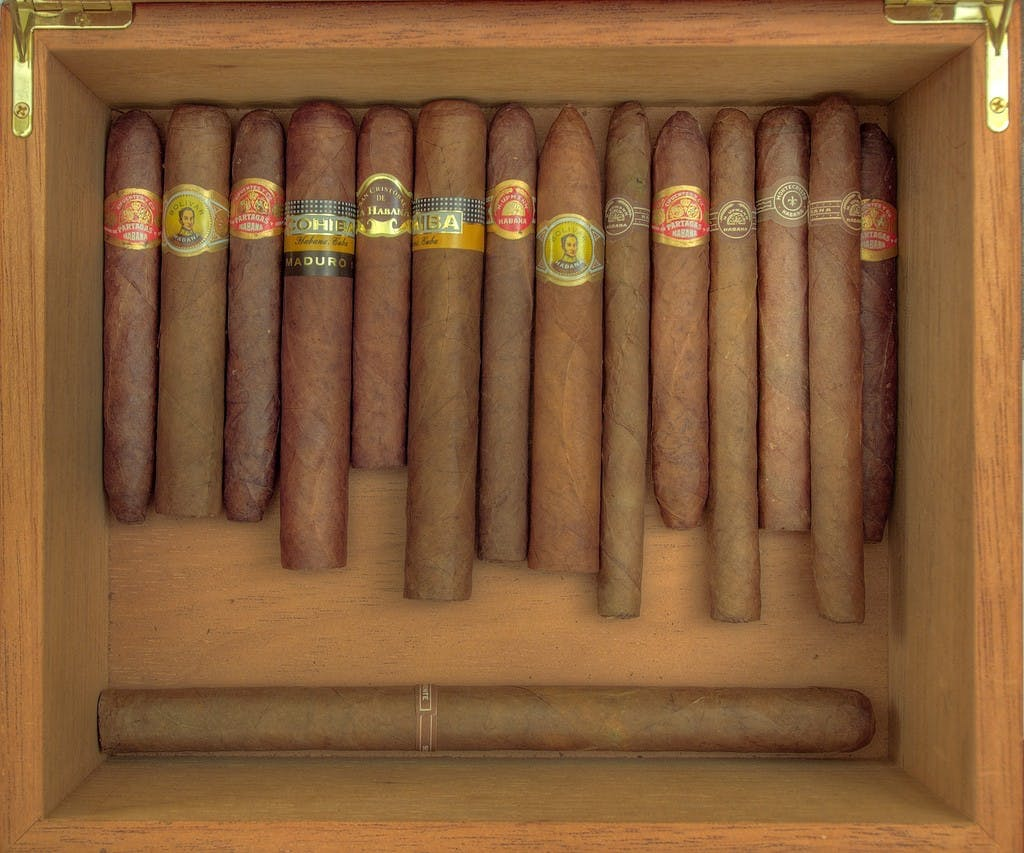 cigars 1024x853 How do you explain your brain on drugs to someone whos never tried them? Visually of course.