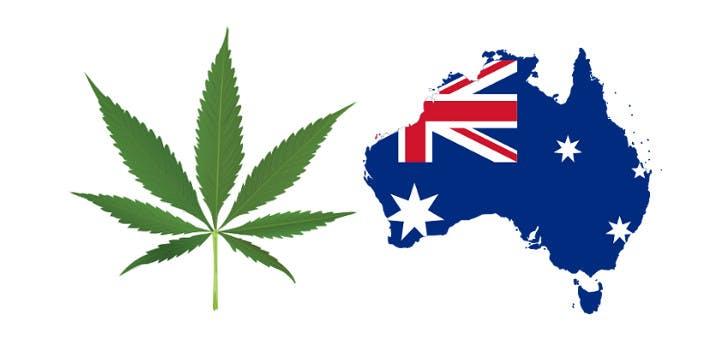 australian doctors want 12 22 720x340 Delaware and Marijuana: 6 Key Facts
