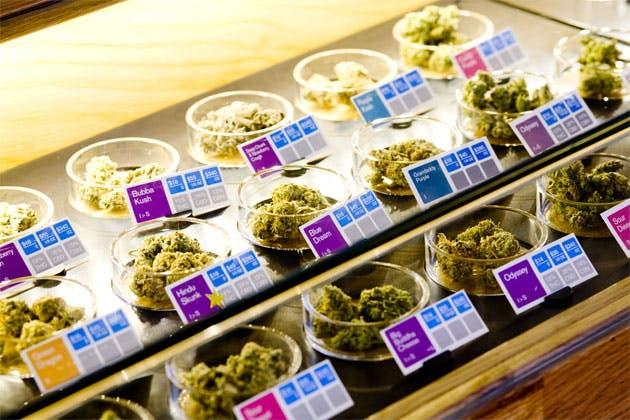 sparc pot dispensary 2 Delaware and Marijuana: 6 Key Facts