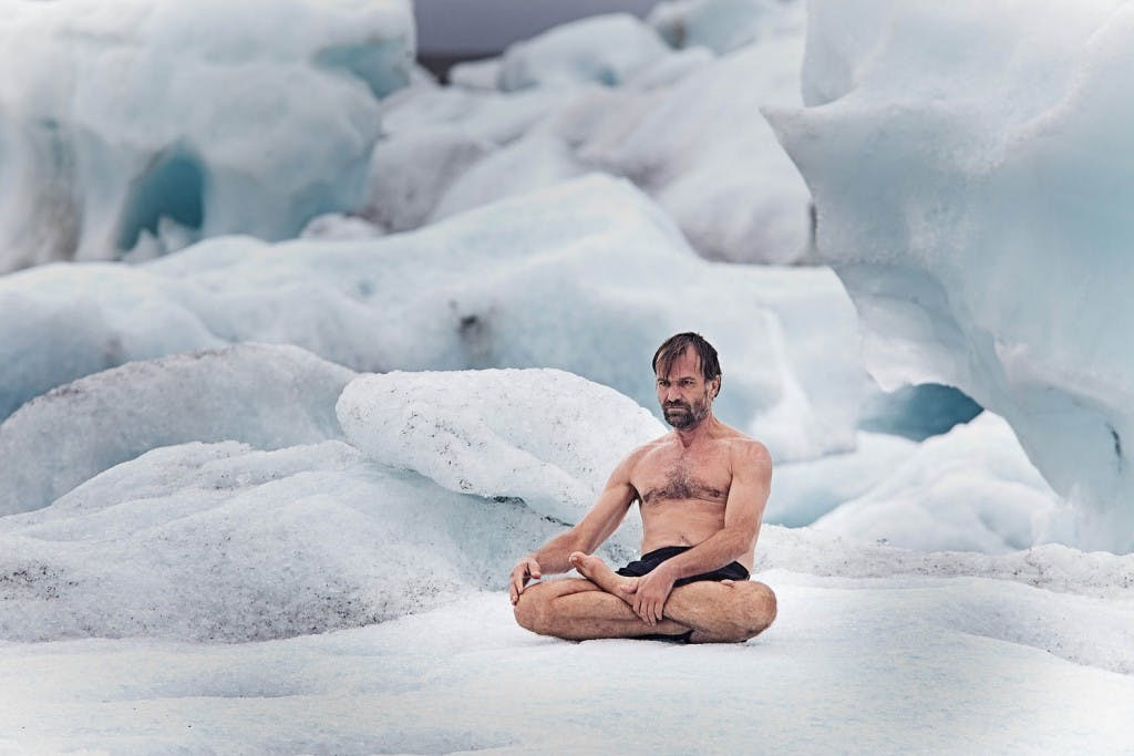 wim hof 1024x683 Which Subscription Cannabis Service is Right for You? Potbox vs. Marvina