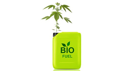 Hemp Biofuel Green Light District for Weed