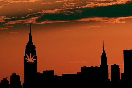 Things You Must Do When Stoned in New York City