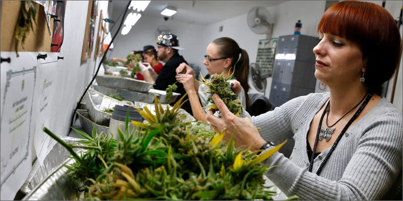 10 facts jobs Marijuana And Modern Day Religion. Is It A Sin?