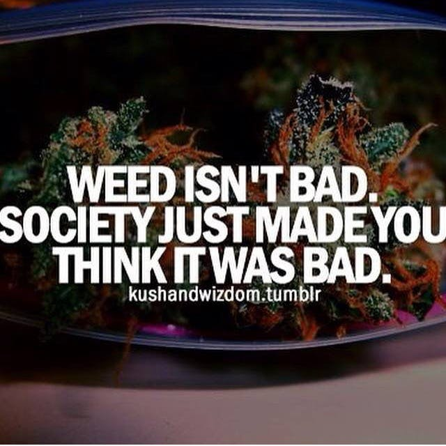 Weed Isnt Bad Stephen Colbert: Welcome To The First Church of Cannabis