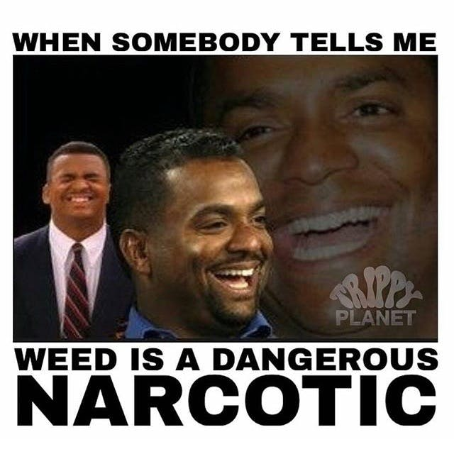 When Somebody Tells Me Stephen Colbert: Welcome To The First Church of Cannabis