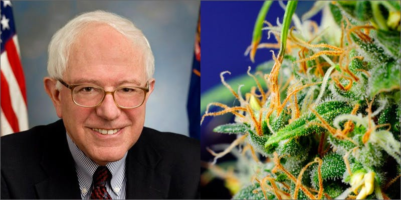 bernie nug Marijuana And Modern Day Religion. Is It A Sin?