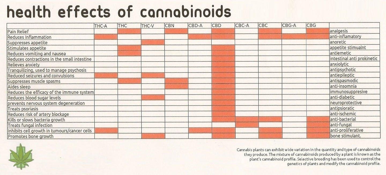 cbg 03 CBG   The Next Big Cannabinoid Strain