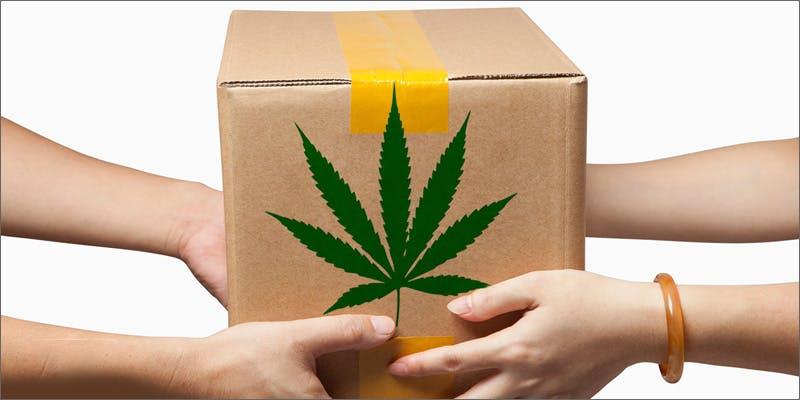Best marijuana subscription services