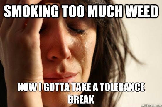 tolerance break 5 Hacks When Your Weed Tolerance Is Too High