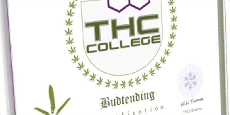 budtender college Success: Judge Approves Dying Woman Access To Medical Marijuana