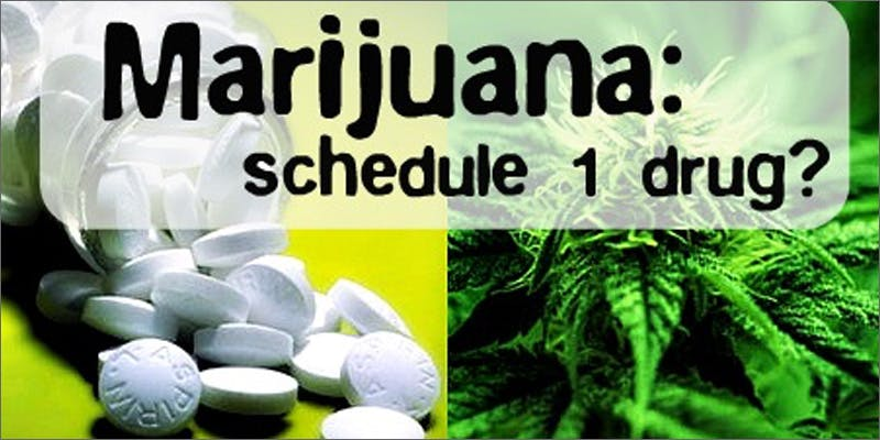 dea schedule 1 Success: Judge Approves Dying Woman Access To Medical Marijuana