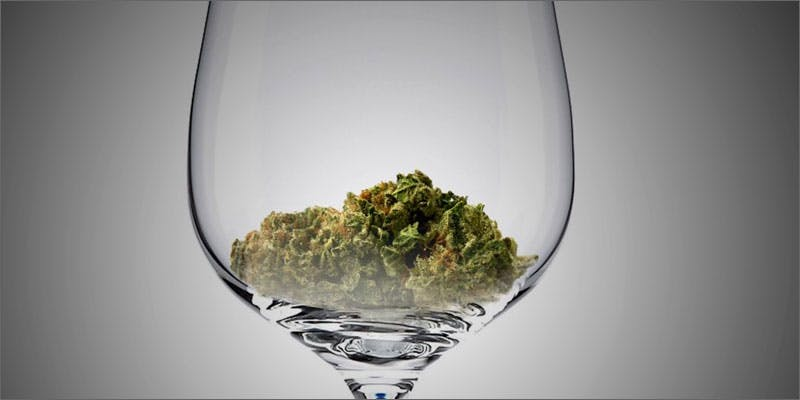 drunk wine 10 Cannabis Drinks You Must Try