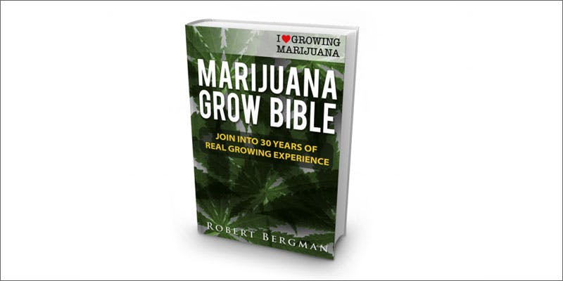 grow bible 10 Cannabis Drinks You Must Try