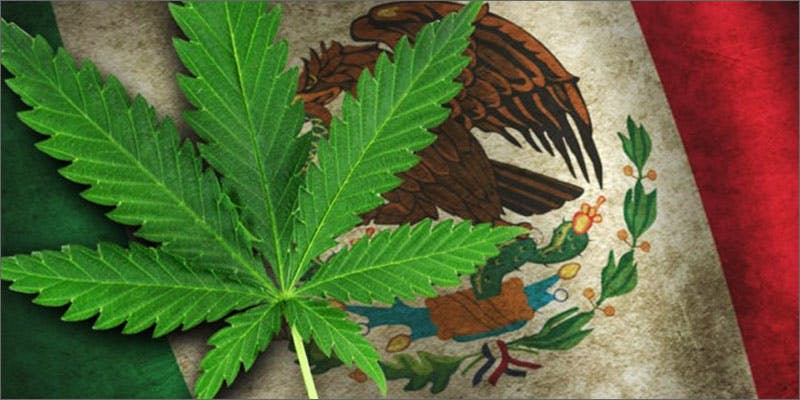 Mexico decriminalize marijuana
