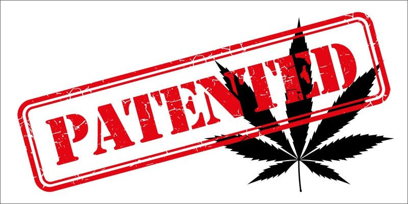 government own marijuana patents