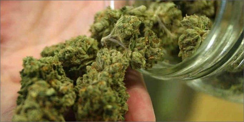 Uruguay marijuana legalization