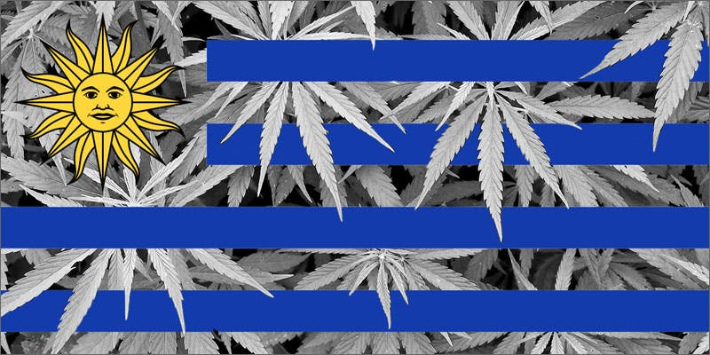uruguay flag 10 Cannabis Drinks You Must Try