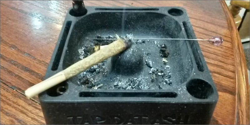 10 rules ash 2 Dumbasses With Weed Get Paranoid And Turn Themselves In