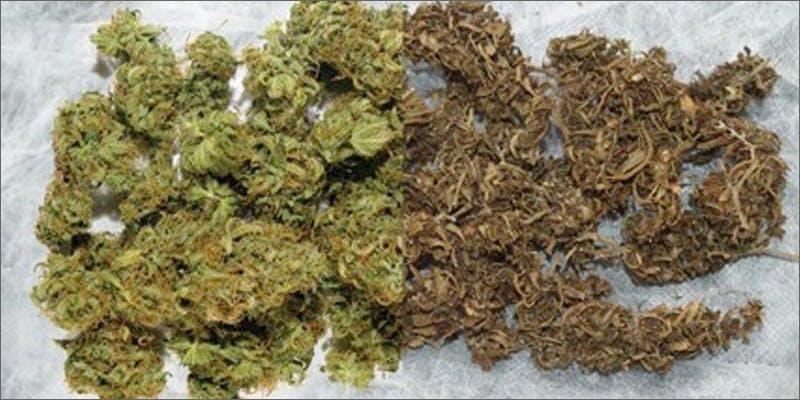 2 Top 5 Tips For New Marijuana Users