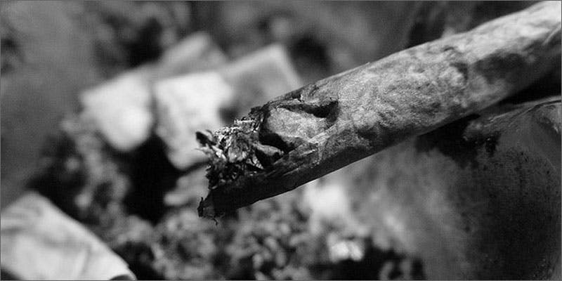 ash joint 2 Dumbasses With Weed Get Paranoid And Turn Themselves In