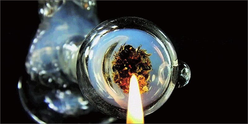 marijuana strain 34x stronger