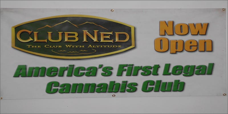 cannabis clube ned 2 Dumbasses With Weed Get Paranoid And Turn Themselves In