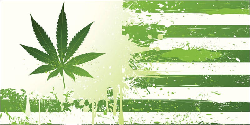 congress us flag 2 Dumbasses With Weed Get Paranoid And Turn Themselves In