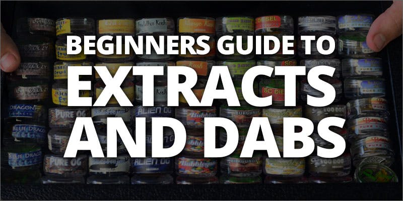 extracts and dabs