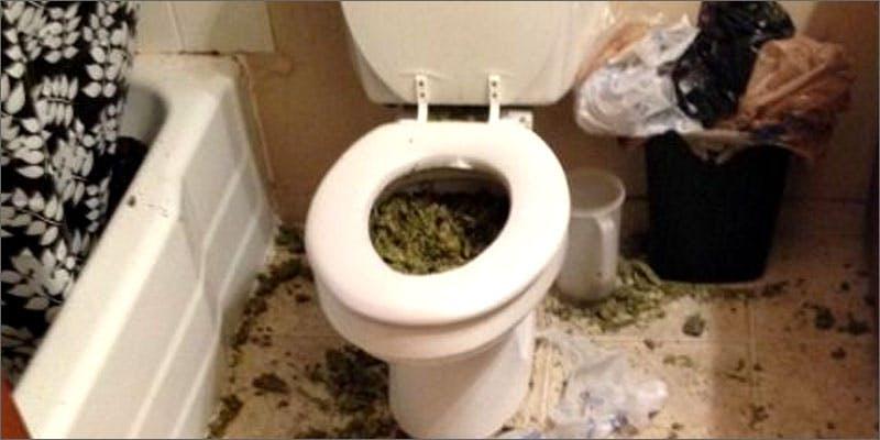 weed fails