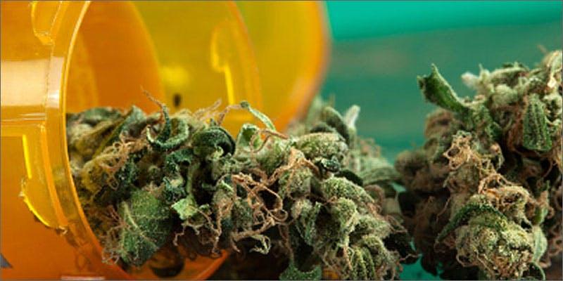Medical marijuana in more than half of US states