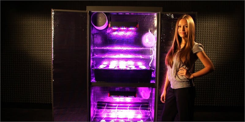 led Could Weed Be In Liquor Stores Soon?