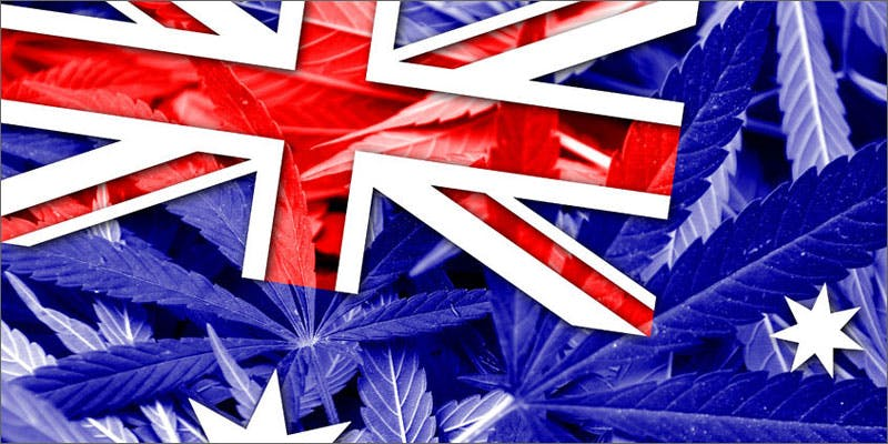 rich flag 10 Cannabis Drinks You Must Try