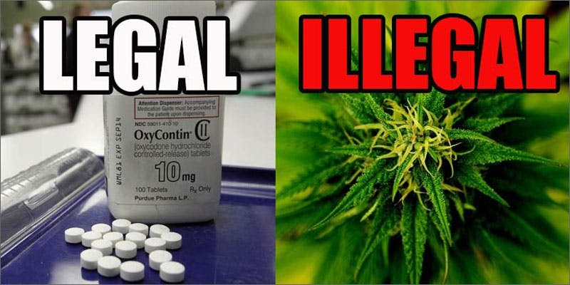 rich legal Could Weed Be In Liquor Stores Soon?