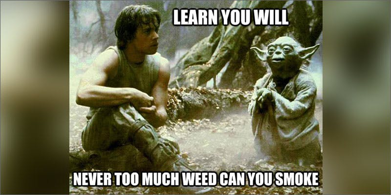 starwars luke Could Weed Be In Liquor Stores Soon?