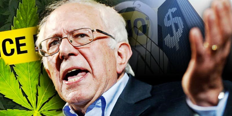 bernie 2 Dumbasses With Weed Get Paranoid And Turn Themselves In