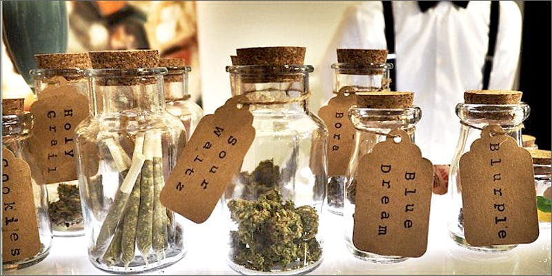 budjars Am I Allowed To Take My Cannabis On An Airplane?