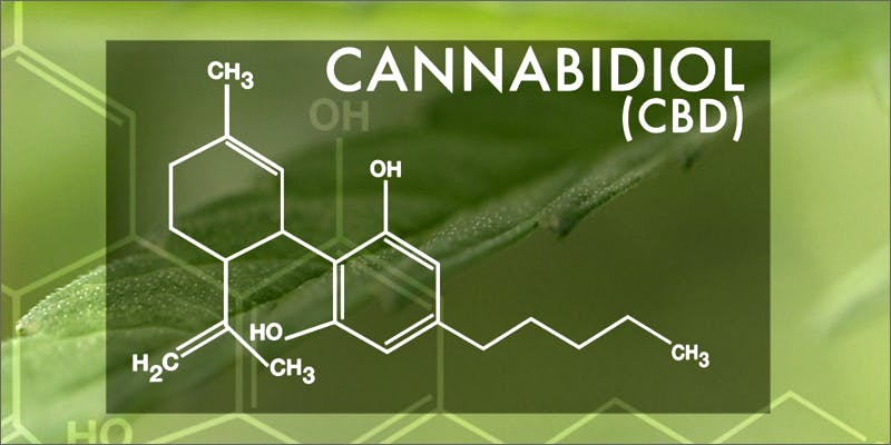 chemistry Am I Allowed To Take My Cannabis On An Airplane?