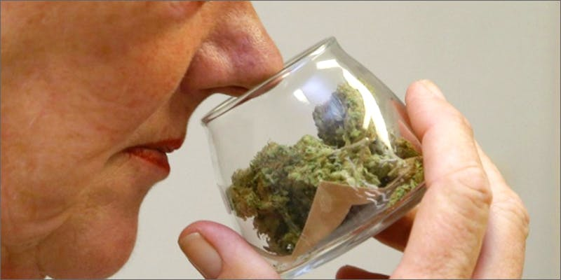 conisseur Am I Allowed To Take My Cannabis On An Airplane?