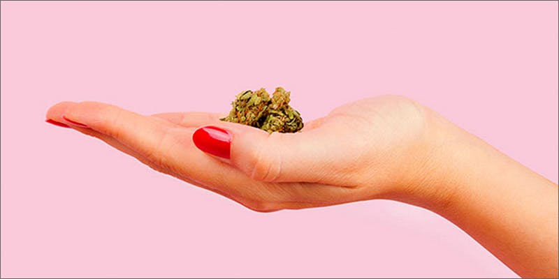 hand 2 Am I Allowed To Take My Cannabis On An Airplane?