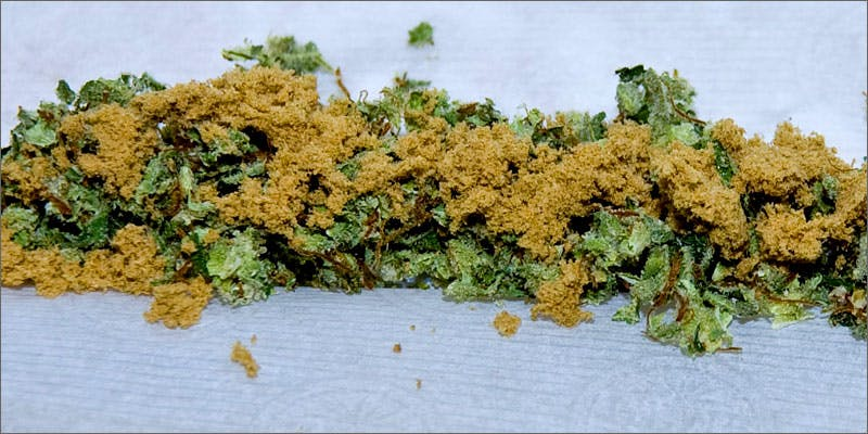 kief rolls 10 Tasty Adult Treats That Will Remind You Of Your Childhood