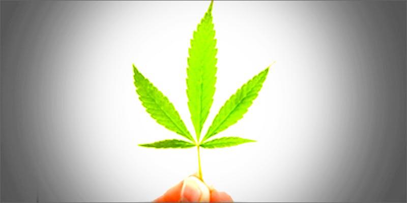 leaf2 Am I Allowed To Take My Cannabis On An Airplane?
