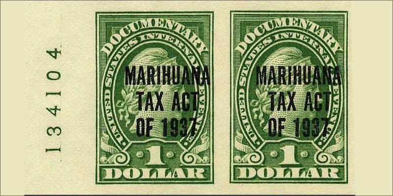 marijuana credits 2 Dumbasses With Weed Get Paranoid And Turn Themselves In