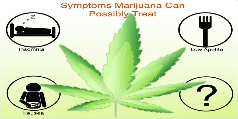 medical card conditions 2 Dumbasses With Weed Get Paranoid And Turn Themselves In