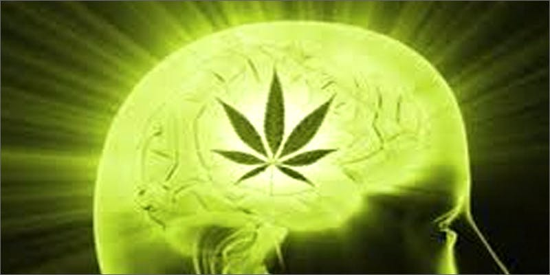 neurogenesis Am I Allowed To Take My Cannabis On An Airplane?