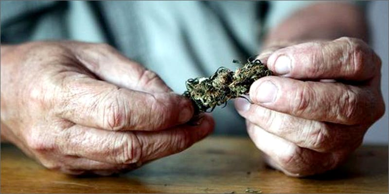 old hands 2 Dumbasses With Weed Get Paranoid And Turn Themselves In