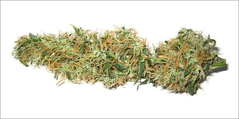 shchedule 1 cannabis Marijuana As A Schedule 1 Drug: What Does It Mean?