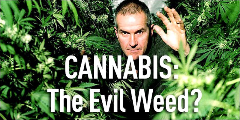the evil weed 10 Tasty Adult Treats That Will Remind You Of Your Childhood