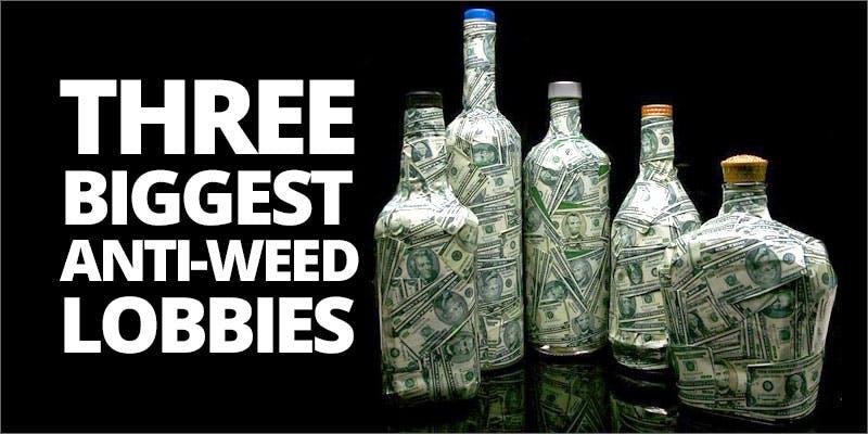 Anti weed lobbies